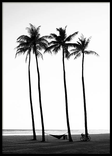 Palm Trees On Beach Poster in der Gruppe Poster / Schwarz-Weiß bei Desenio AB (10233)