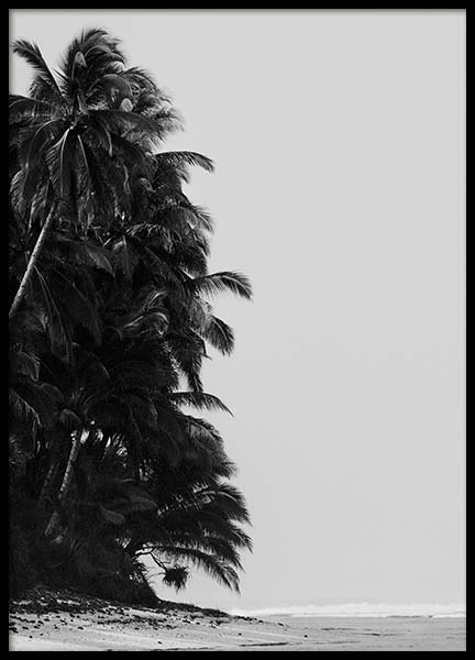 Palm Trees By Sea Poster in der Gruppe Poster / Naturmotive bei Desenio AB (10235)