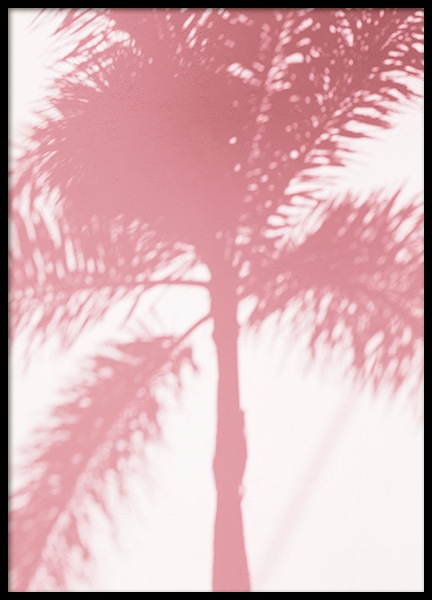 Pink Palm Shadow Poster