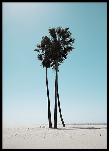 LA Beach Palms Poster