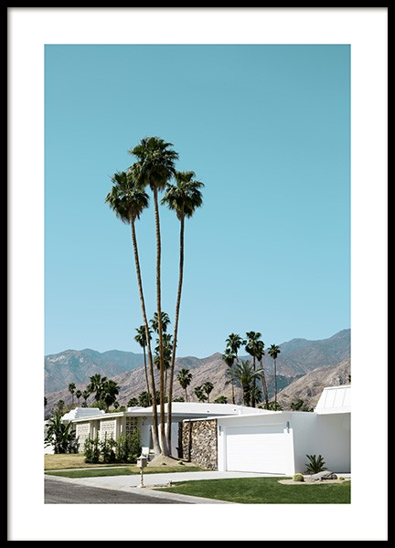 Street of Palm Springs Poster