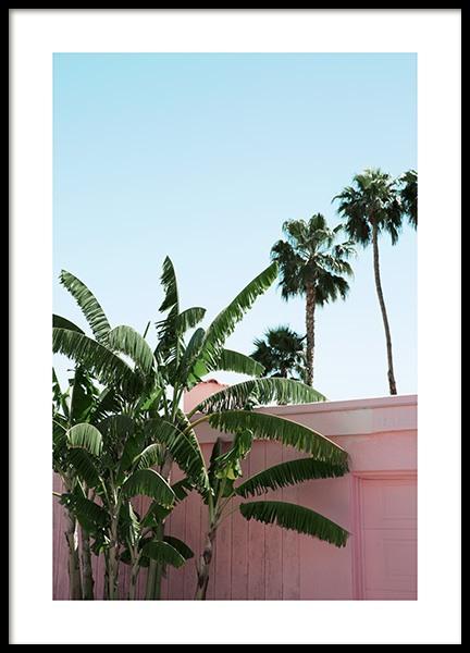 Pink Banana Leaves Poster
