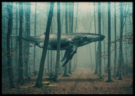 Whale in Forest Poster in der Gruppe Poster / Naturmotive bei Desenio AB (10801)