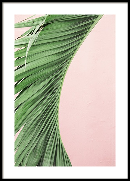 Pink and Green Palm No1 Poster in der Gruppe Poster / Botanik bei Desenio AB (10855)