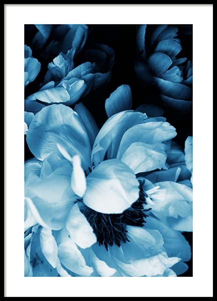 Blue Peony No1 Poster in der Gruppe Poster / Fotografien bei Desenio AB (11778)