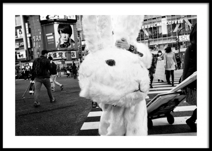 Bunny Head Poster