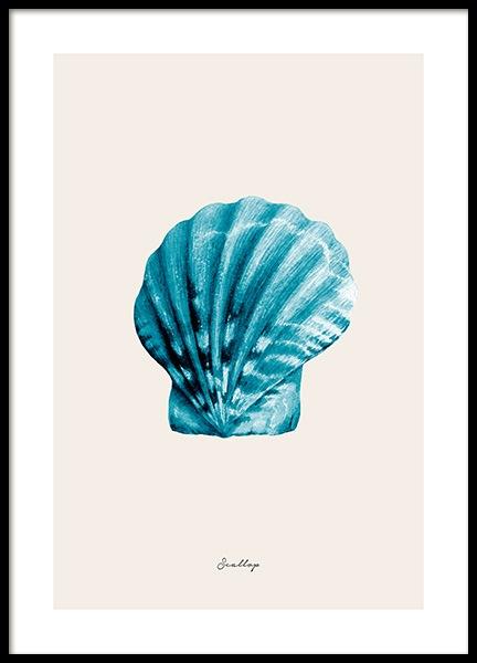 Blue Scallop Poster