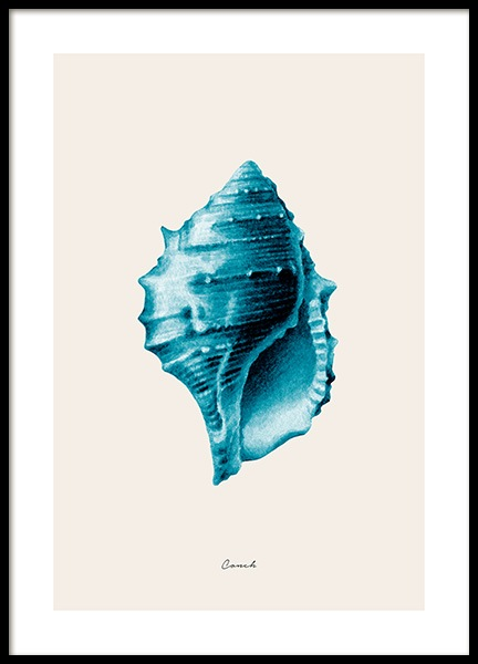 Blue Conch Poster