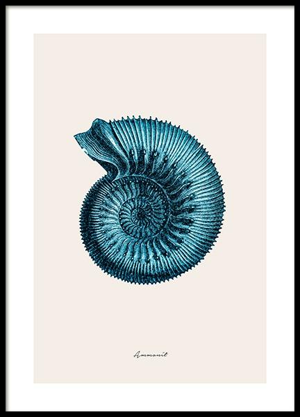 Blue Ammonit Poster