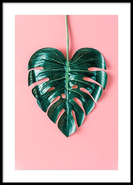 Heart-Shaped Monstera Poster