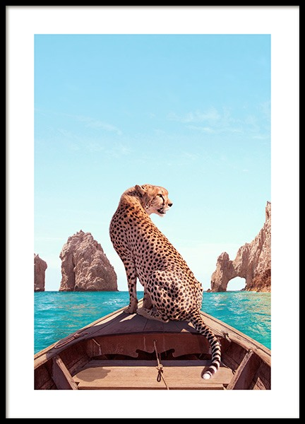 Los Cabos Poster in der Gruppe Poster / Naturmotive bei Desenio AB (12738)