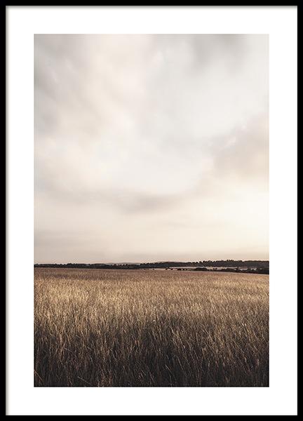 Calm Field Poster