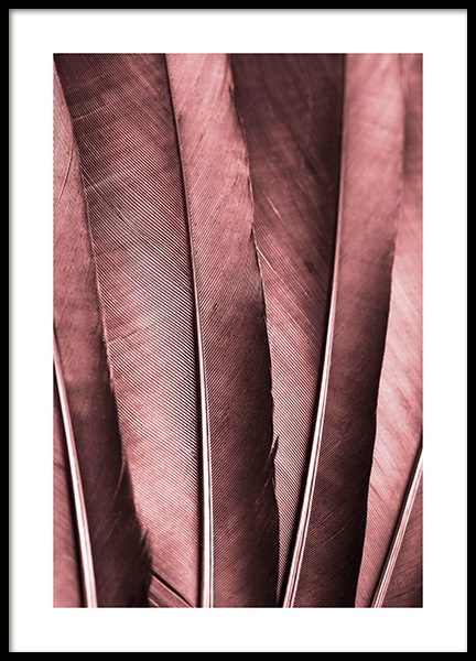 Burgundy Feathers Poster
