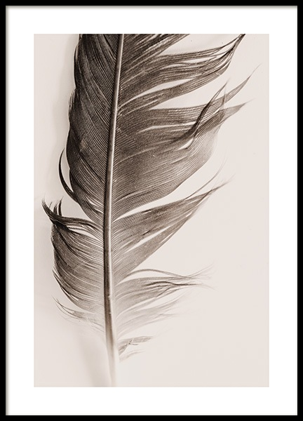 Feather Beige Poster in der Gruppe Poster / Naturmotive bei Desenio AB (13646)
