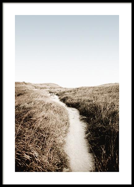 Sunset Path Poster