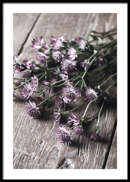 Pick Me Flowers Poster