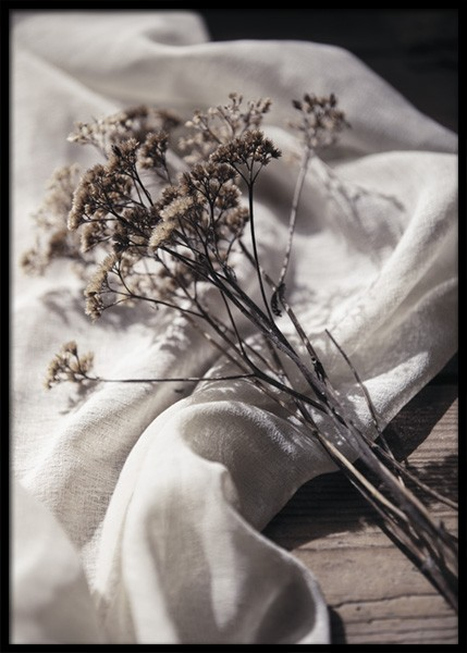 Dried Bed Poster