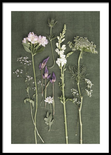 Seven Kinds Of Flowers Poster