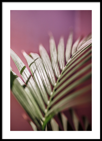 Keep It Palm Poster