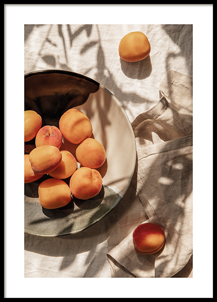Apricots In Sunlight Poster