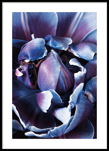 Holographic Bloom No1 Poster