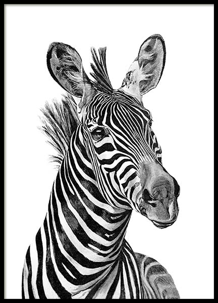 Zebra Black And White Poster in der Gruppe Poster / Kinder bei Desenio AB (2400)