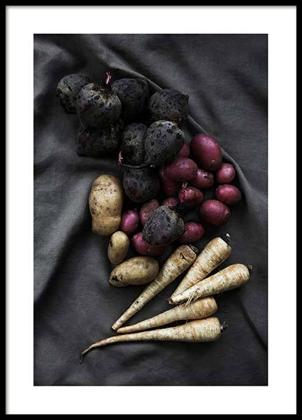 Vegetables From The Garden Poster