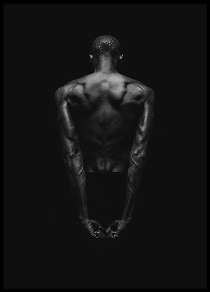 Black Back Poster