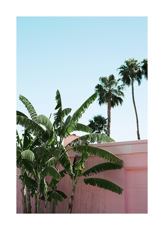 Pink Banana Leaves Poster / Pflanzen bei Desenio AB (10791)