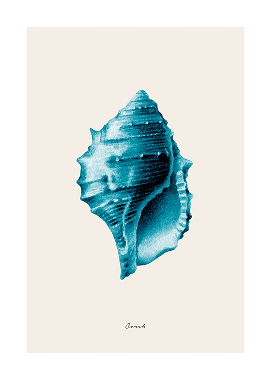 Blue Conch Poster / Illustration bei Desenio AB (12428)