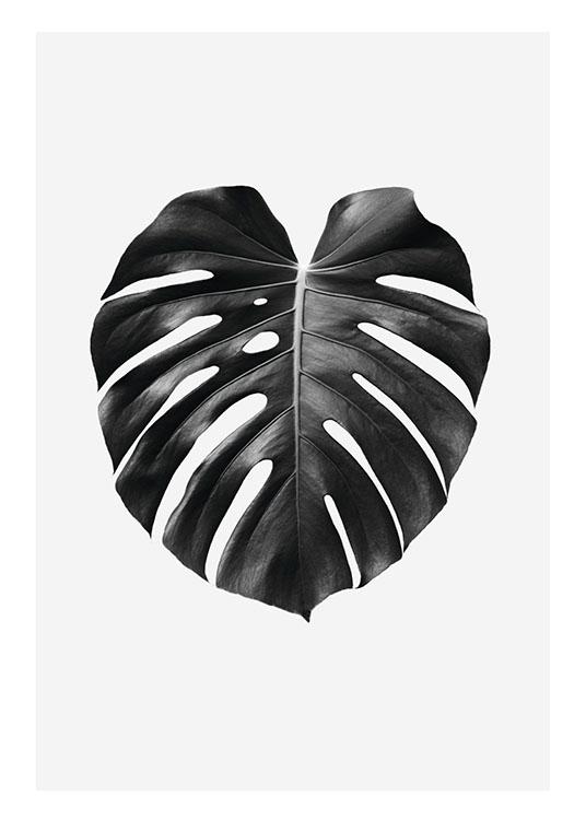 Botanik Poster Für Eine Elegante Einrichtung Online Mit Pflanzen