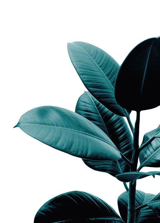 Botanik Poster Mit Pflanze Poster Mit Foto Desenio